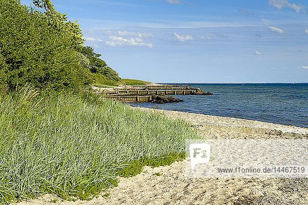 Dänemark  Jütland  Sonderborg  Strand in der Bucht von Sonderborg