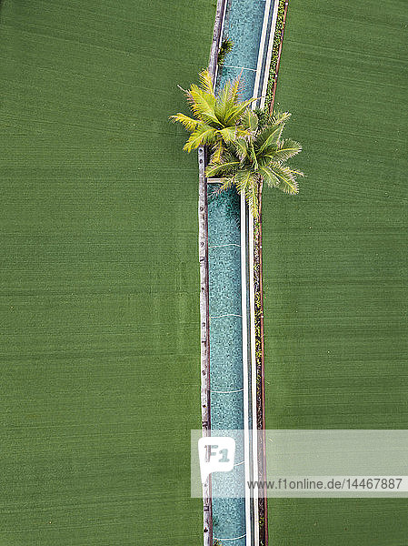 Indonesien  Bali  Luftaufnahme von Keramas  Pool und Palmen