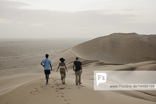 Namibia  Namib  back view of three friends walking side by side on desert dune
