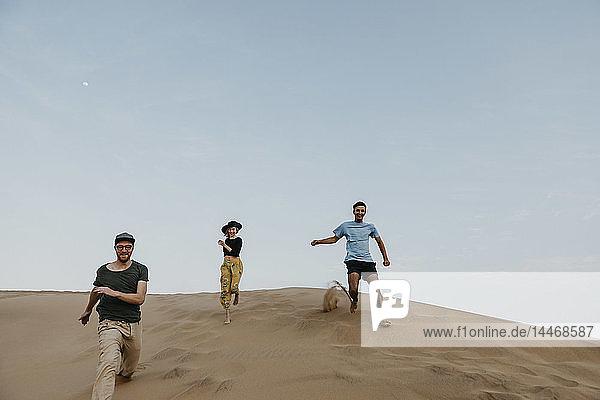 Namibia  Namib  drei Freunde laufen auf einer Wüstendüne und amüsieren sich