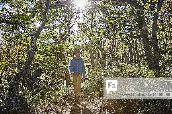 Chile  Cerro Castillo  boy on a hiking tour in forest