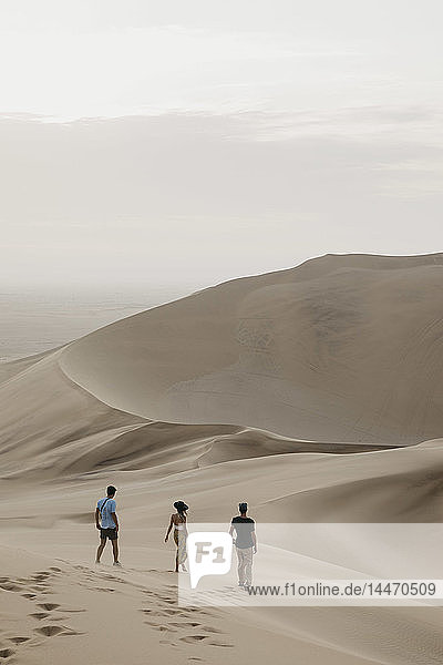 Namibia  Namib  three friends walking down desert dune