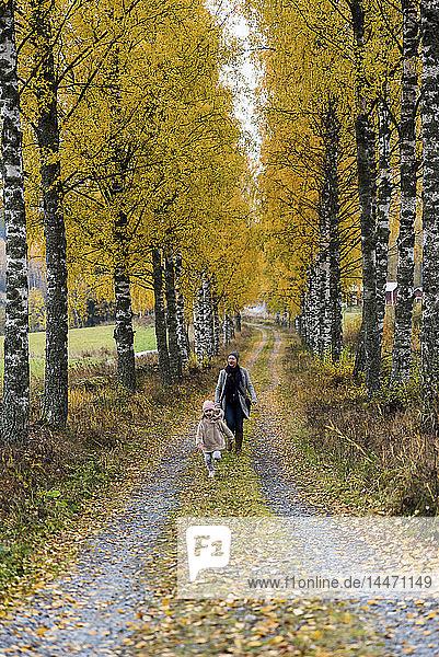 Finnland  Kuopio  Mutter und kleine Tochter spazieren im Herbst gemeinsam