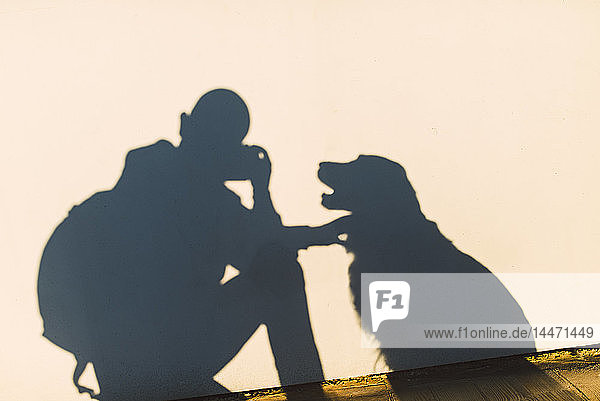 Shadow of a photographer and dog on a white wall