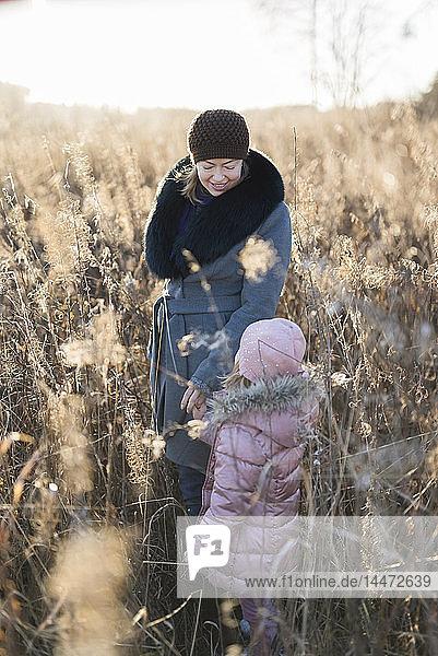 Kleines Mädchen steht Hand in Hand mit seiner Mutter auf der Herbstwiese zur goldenen Stunde