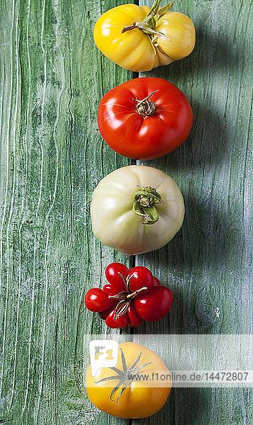 Reihe von fünf verschiedenen Tomaten auf grünem Holz