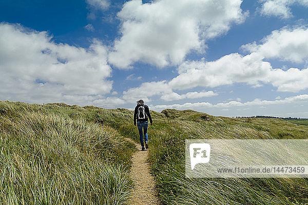 Dänemark  Jütland  Frau wandert in Dünenlandschaft