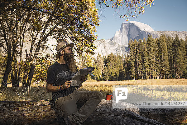 USA  California  bearded man with a map sitting on a log in Yosemite National Park