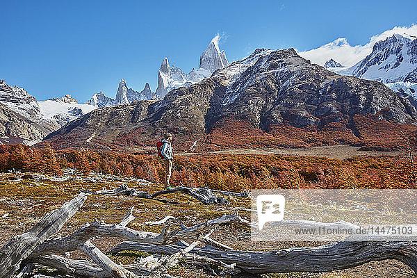 Argentinien  Patagonien  El Chalten  Frau auf einer Wanderung im Fitz Roy