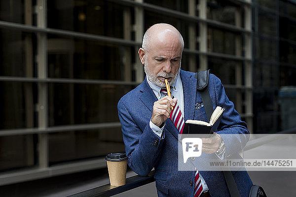 Senior businessman checking diary outdoors