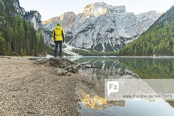 Italy  Braies Lake  man at the lakeside with mountains and forest in background