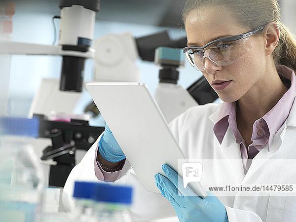 Wissenschaftler  der während eines Experiments im Labor Daten zu einer Tablette hinzufügt