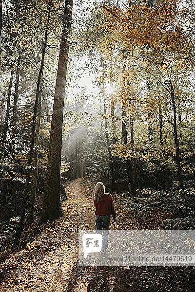 Deutschland  Schwarzwald  Sitzenkirch  Frau beim Spaziergang im Herbstwald