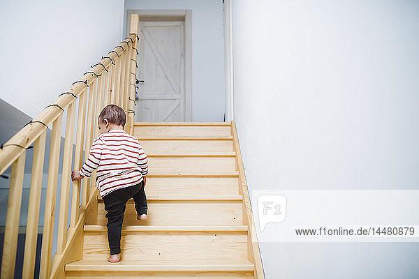 Toddler boy walking up stairs at home