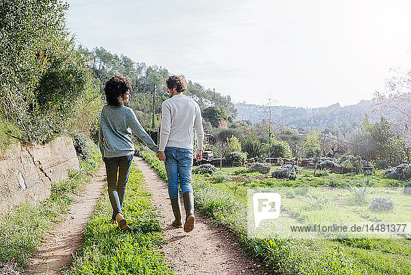 Happy couple walking in the countryside  holding hands
