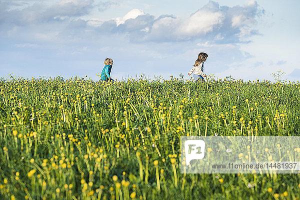 Zwei glückliche Kinder rennen über eine Wiese mit Löwenzahn