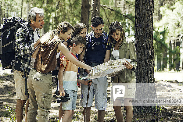 Family reading a map while standing in forest