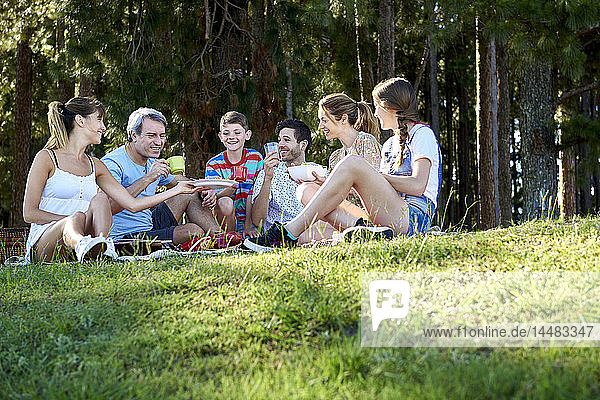 Family having food during picnic