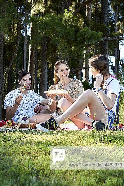 Family enjoying food during picnic