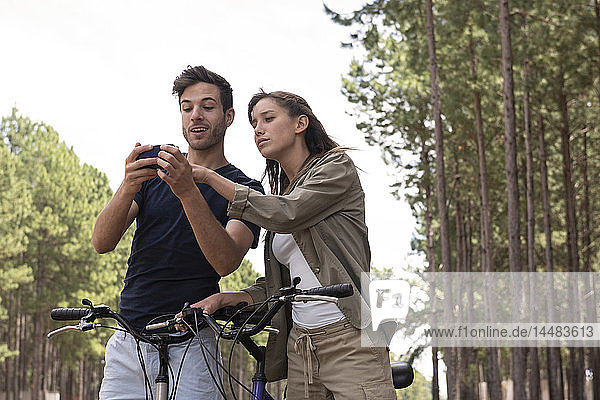 Young couple using smart phone in pine forest
