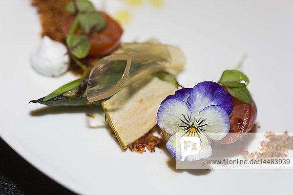 Nahaufnahme einer Gourmet-Vorspeise mit essbarer Blume