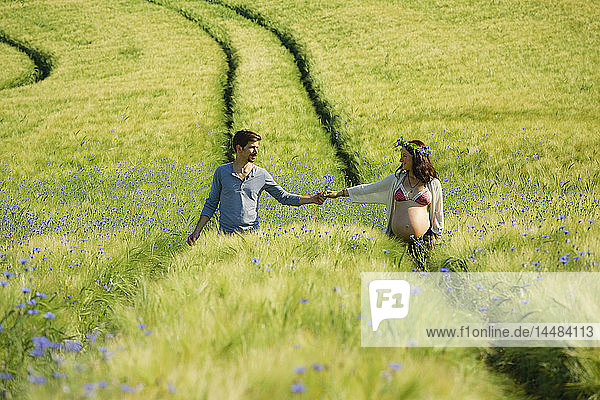 Affectionate pregnant couple holding hands  walking in sunny  idyllic rural green field