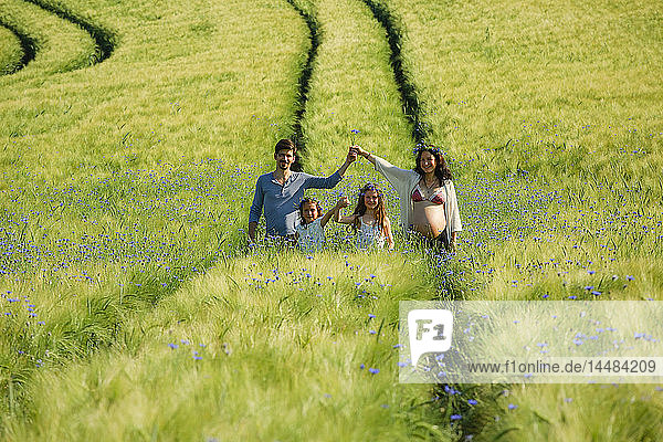 Portrait pregnant family in sunny  idyllic rural green field with wildflowers