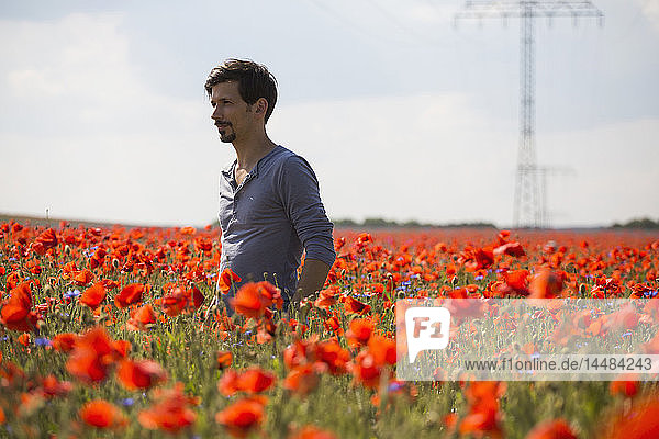 Man standing in sunny  idyllic rural red poppy field