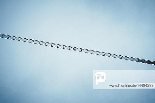 View from below boy laying on suspension bridge below blue sky  Tyrol  Austria