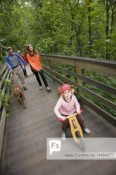 Family with kids and dogs walking on the boardwalk along the trail to Thunderbird Falls,  Southcentral,  Alaska