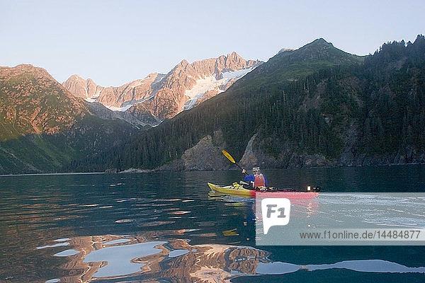 Kayaker paddles into Quicksand Cove at dawn Aialik Bay Kenai Fjords National Park Alaska Kenai Peninsula summer