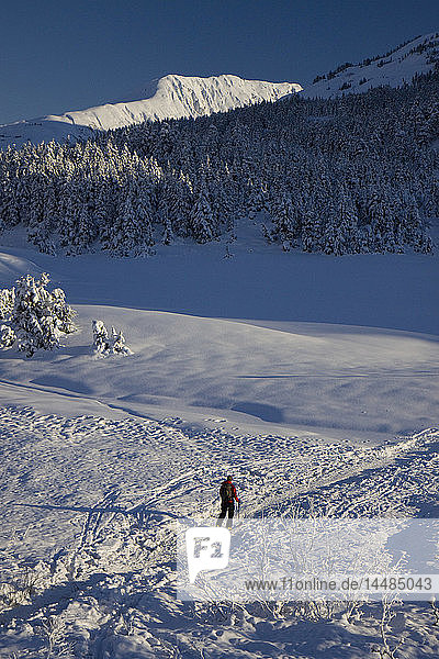 Cross country skier skiing in Turnagain Pass  Southcentral Alaska