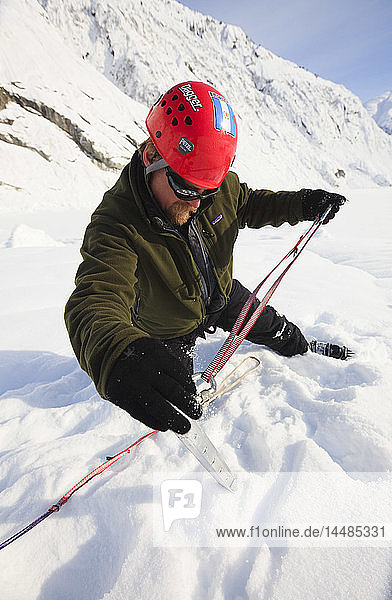 Climber sets a snow picket for protection while on top of Shakes Glacier  Stikine-LeConte Wilderness  Southeast Alaska