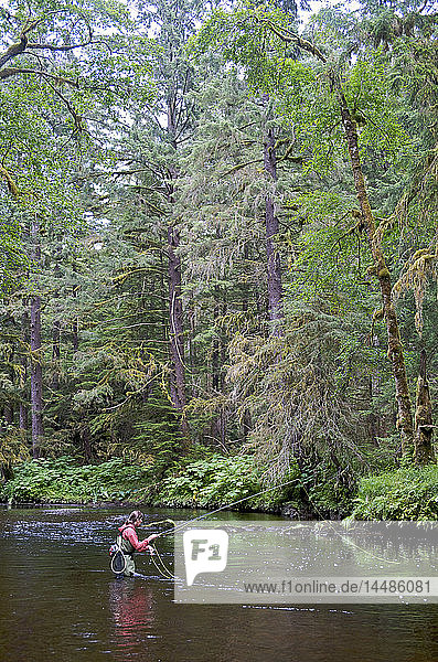 Woman fly fishing on Ward Creek in the Tongass National Forest near Ketchikan  Alaska