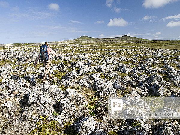 Woman hikes across a former lava field to volcanic peaks  St. Paul Island  Southwest Alaska  Summer