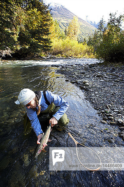Woman releases a rainbow trout caught while fly fishing on Ptarmigan Creek in the Kenai Peninsula of Southcentral Alaska during Fall
