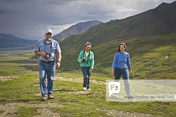 Mature couple and middle age woman hike on Tundra in Toklat river area in Denali National Park  Alaska during Summer