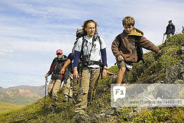 Group of hikers on a ridge in the Alaska Range above Thorofare River  Denali National Park  Interior Alaska  Summer/n