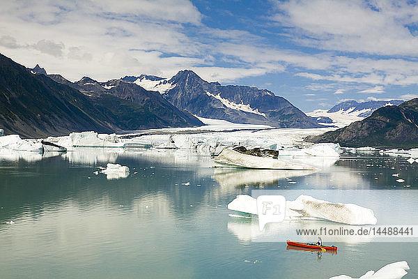 Female canoeist paddles amongst the icebergs in Bear Glacier Lake with Bear Glacier in the background  Kenai Fjords National Park  Kenai Peninsula  Southcentral Alaska  Summer