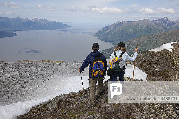 Hikers overlooking Turnagain Arm  Chugach Mountains Southcentral Alaska  Summer