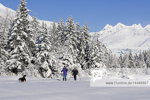Women w/dog cross-country skiing along frozen Mendenhall River Tongass National Forest AK Winter