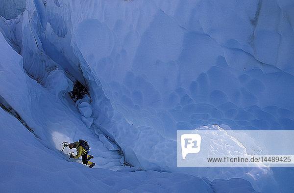 Ice Climber Climbing in Crevasse Matanuska Glacier