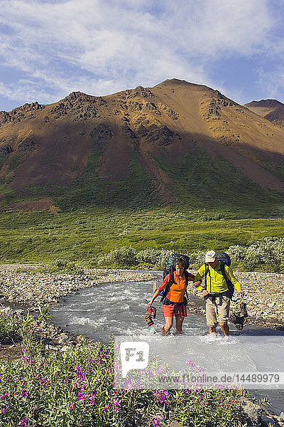 Couple wading across Stony Creek on hike in Denali National Park Interior Alaska Summer