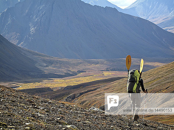 Female backpacker with a packraft enjoys view along the trail to the headwaters of Sanctuary River  Interior Alaska  Autumn