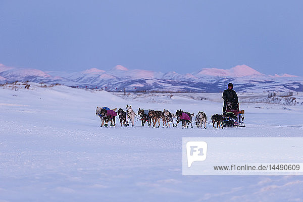 Aaron Burmeister runs on the slough with the Whaleback Mountains in the background leaving the Unalakleet during Iditarod 2015