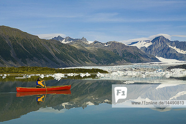 Female canoeist paddles amongst the icebergs in Bear Glacier Lake with Bear Glacier in the background  Kenai Fjords National Park  Kenai Peninsula  Southcentral Alaska  Summer
