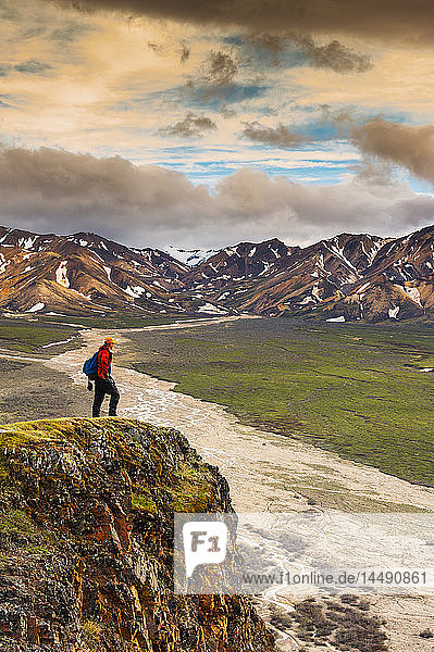 A man standing on a bluff at Polychome Pass with the Plains of Murie and the Alaska Range in the background  Denali National Park  Interior Alaska