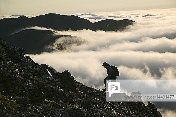 Hiker on Caribou Pass Above Cloud Layer Above Arctic Ocean ANWR AK AR Summer Silhouette
