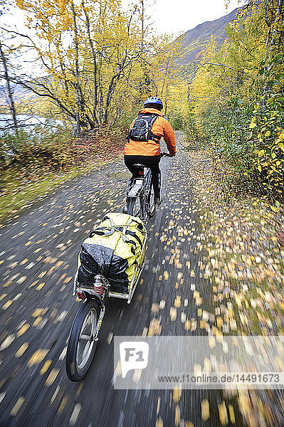 Female cyclist rides with a bike trailer along Eklutna Lake in the Chugach State Park  Southcentral Alaska