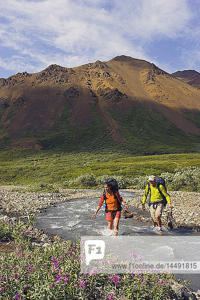 Couple wading across Stony Creek on hike in Denali National Park Interior Alaska Summer